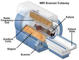 Cutaway of closed MRI