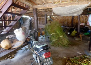 Cycle in a village home