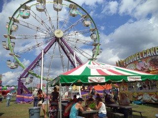 Polk Co. Fair Ferris Wheel