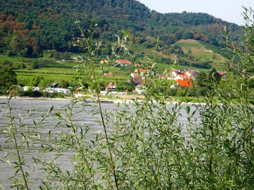 dsc01236-the-wachau-region-of-the-danube