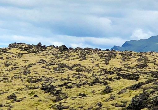Volcanic mountain with lava fields of moss