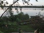 Falling-pines-and-oaks-along-the-shore,-South-White-Ash-Lake