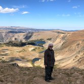 Gunter at Beartooth Pass