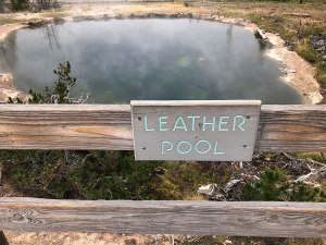 Leather Pool