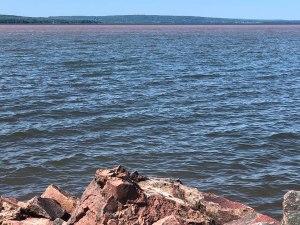 Lakeshore Superior
