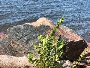 Lake Superior boulder