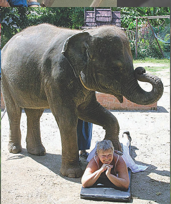 Tickled by an elephant